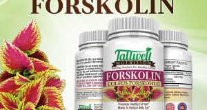 Pure Forskolin Extract Weight Loss & Diet Pills – Best Fat Burners – 60 Capsules