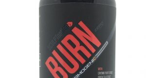 SCULPTnation BURN Thermogenic Fat Burner Weight Loss 60 Capsules  NEW